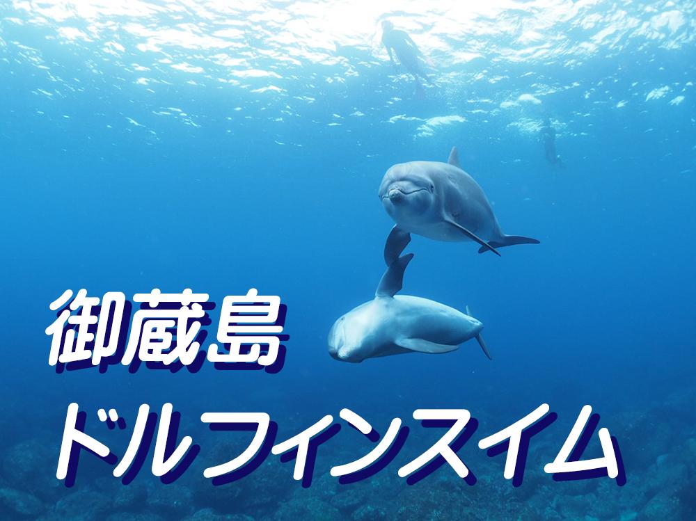 野生のイルカと泳げる島・御蔵島へ行こう!